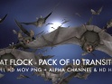 BAT FLOCK – PACK OF 10 TRANSITIONS – $20