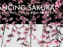 DANCING SAKURA – LOOP – $10