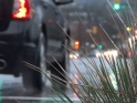RAIN – 39 – CITY STREET TRAFFIC AND BUILDINGS – $12