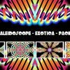 VJ KALEIDOSCOPE – EXOTICA – PACK OF 5 – $13