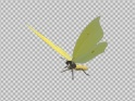 FLYING BUTTERFLY – EURASIAN BRIMSTONE – LOOP – $10