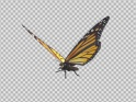 FLYING BUTTERFLY – AMERICAN MONARCH – LOOP – $10