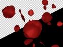PETAL RAIN – RED – I – LOOP – $10