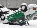 RANDOM SNOW – LOOP – $8